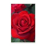 Red rose 3x5 Rugs