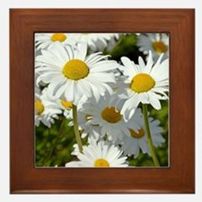 Unique Daisy Framed Tile