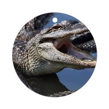 Images for Croc Calendar Round Ornament