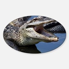 Images for Croc Calendar Decal
