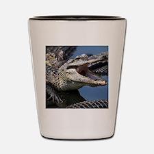 Images for Croc Calendar Shot Glass