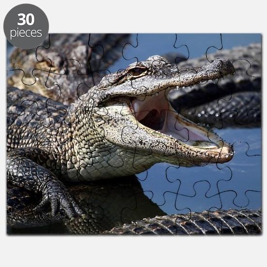 Images for Croc Calendar Puzzle