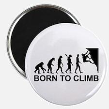 "Evolution rock climbing 2.25"" Magnet (100 pack)"