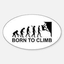Evolution rock climbing Decal