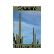 Saguaro National Park (Vertic Rectangle Magnet