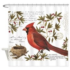 modern vintage winter woodland cardinal Shower Cur