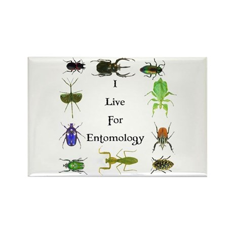 I Live For Entomology 1 Rectangle Magnet