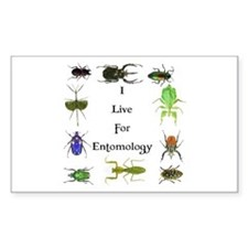 I Live For Entomology 1 Rectangle Decal