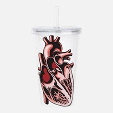 half-human-heart.png Acrylic Double-wall Tumbler