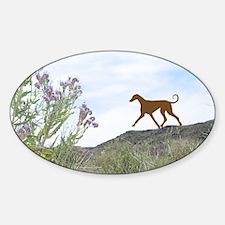 Desert Flower Azawakh Oval Decal
