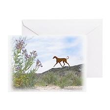 Desert Flower Azawakh Greeting Cards (Pk of 10