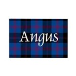 Tartan - Angus dist. Rectangle Magnet (10 pack)
