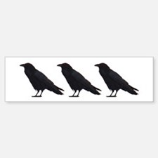 Black Crows Bumper Bumper Bumper Sticker