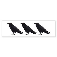 Black Crows Bumper Bumper Sticker