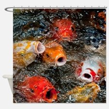 Funny Photography koi Shower Curtain