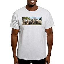 2002 Ewephoric Lambs T-Shirt