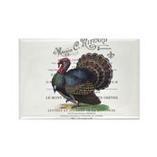 modern vintage fall turkey Magnets