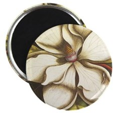 modern vintage fall magnolia flower Magnets