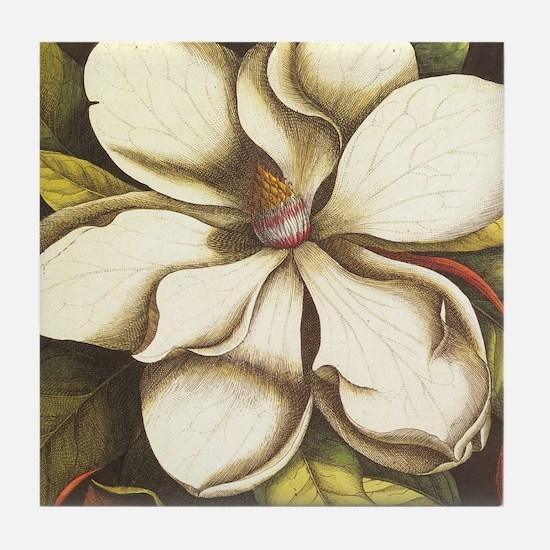 modern vintage fall magnolia flower Tile Coaster