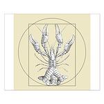 Vetruvian Crawfish1 Mini Poster