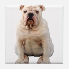 Cute Bulldogs Tile Coaster