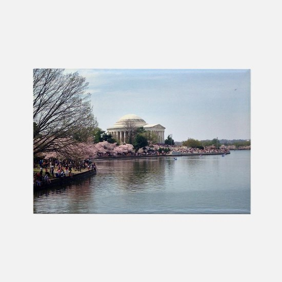 Blossoms in DC Rectangle Magnet