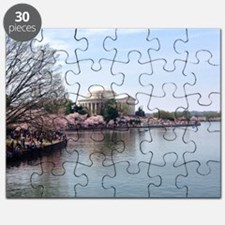 Blossoms in DC Puzzle