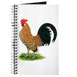 Dutch Bantam Rooster Journal