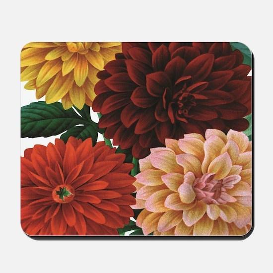 modern vintage fall dahlia flowers Mousepad