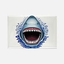 Shark Jaws Attack Magnets