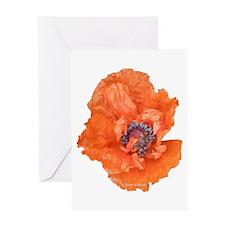 Oriental Poppy 01 Greeting Cards
