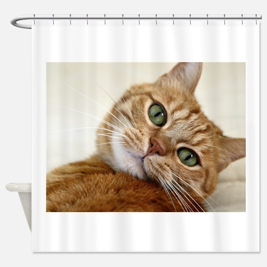 Unique Brown and white cat Shower Curtain