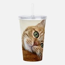 Cool Black and white tuxedo cat Acrylic Double-wall Tumbler