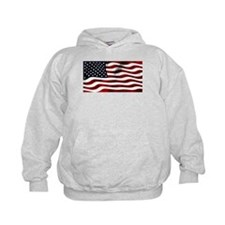 Funny North and south pole Hoodie