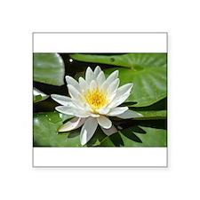 White Lotus Flower Sticker