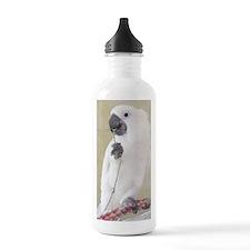 Funny Birds Water Bottle