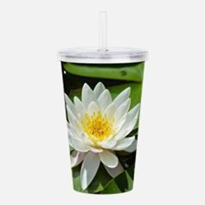 Peace out Acrylic Double-wall Tumbler