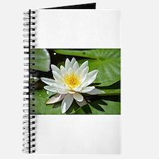 Cool Artwork buddhist Journal