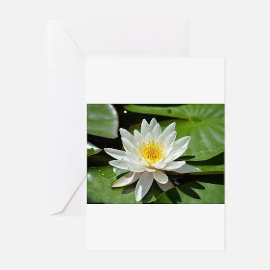 White Lotus Flower Greeting Cards