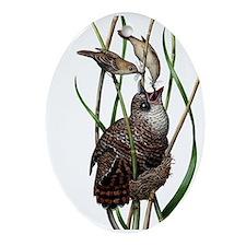 Baby Bird I Ornament (Oval)