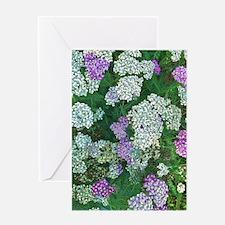 Floral Abundance Greeting Cards