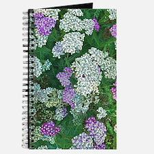 Floral Abundance Journal