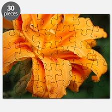 Orange Daylily  Puzzle