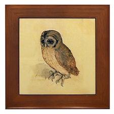 Albrecht Durer Little Owl Framed Tile
