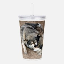 Cool Wolves Acrylic Double-wall Tumbler