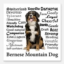 "Berner Traits Square Car Magnet 3"" x 3"""