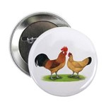 Buff Catalana Chickens2 Button