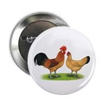 "Buff Catalana Chickens2 2.25"" Button (10 pack"