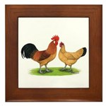 Buff Catalana Chickens2 Framed Tile