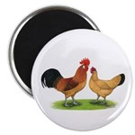 "Buff Catalana Chickens2 2.25"" Magnet (10 pack"